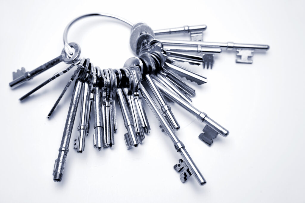rapid advancing technology - a key ring with many keys